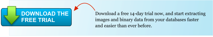 Download a free 14-day trial now, and start extracting images and binary data from your databases faster and easier than ever before. DOWNLOAD THE FREE TRIAL